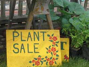 Plant Nurseries near Libertyville